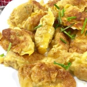 Easy Pork Dumplings