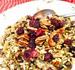 Wild rice with cranberries and pecans on a white plate