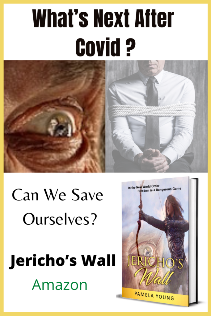 """Jericho's Wall book cover with the words, """"What's Next After Covid? Can We Save Ourselves?"""